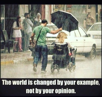 example not opinion
